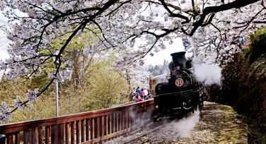 Rail Tour